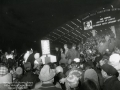 Festival of Lights (6)