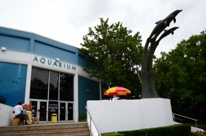 Aquarium of Niagara Falls