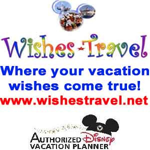 Wishes Travel web ad