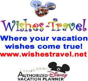Wishes Travel web ad_edited-1